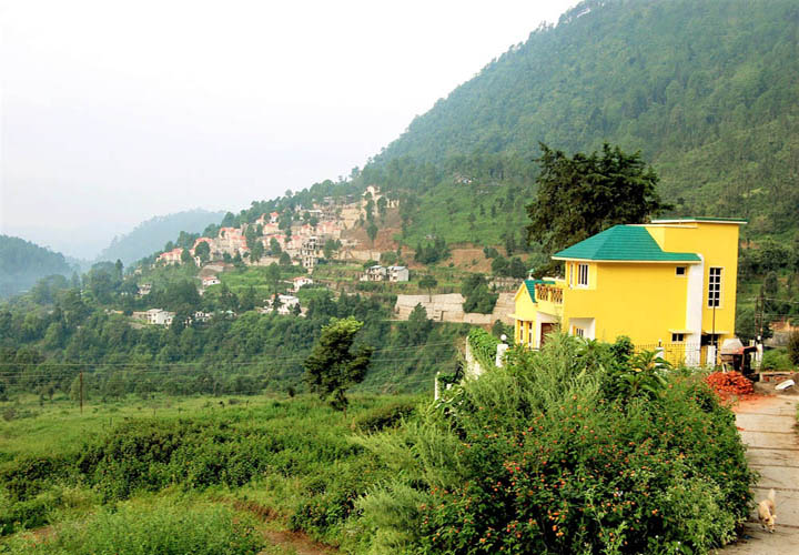 Buy Apartments in nainital